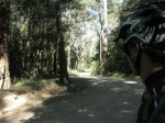 Old Gympie Road