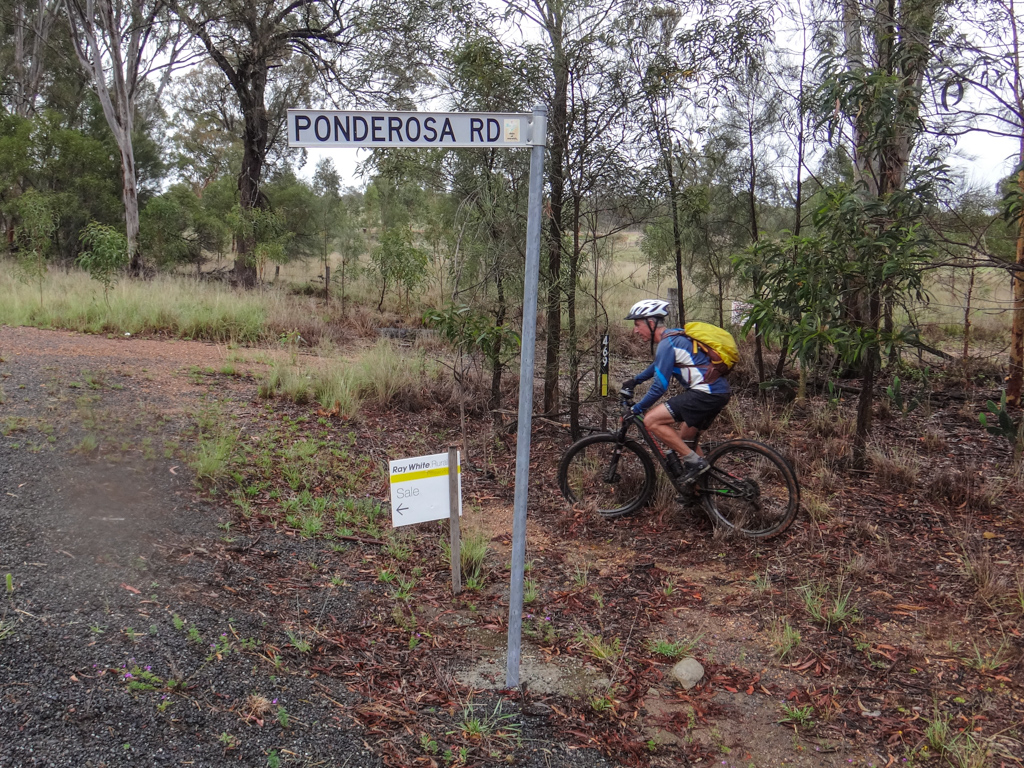 Ponderosa Road