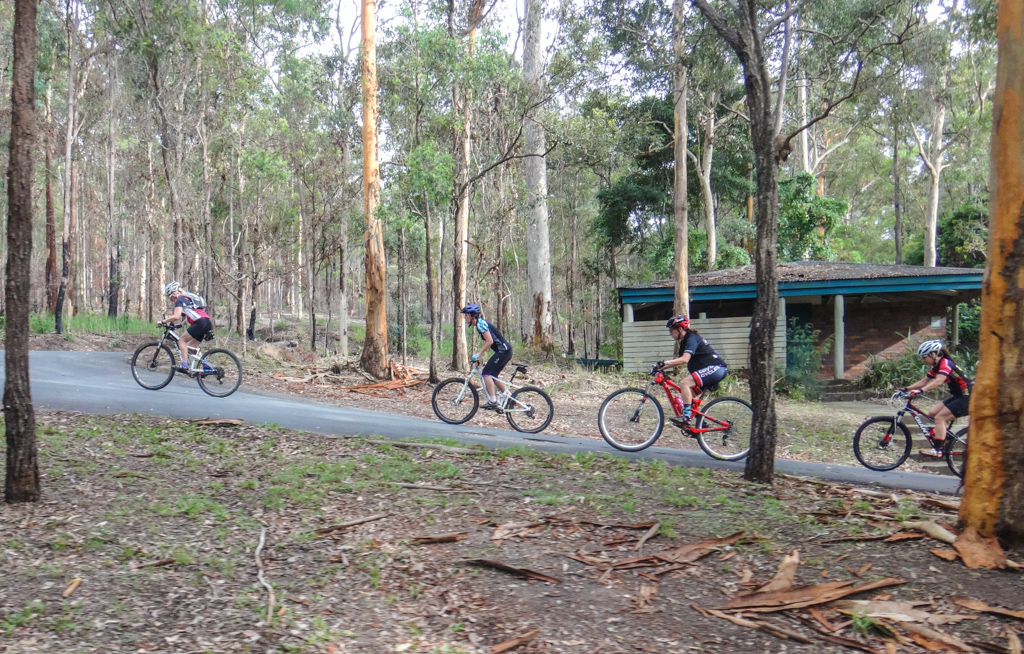 Carpark - Ironbark Gully