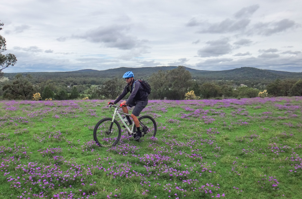 Riding in the Flowers