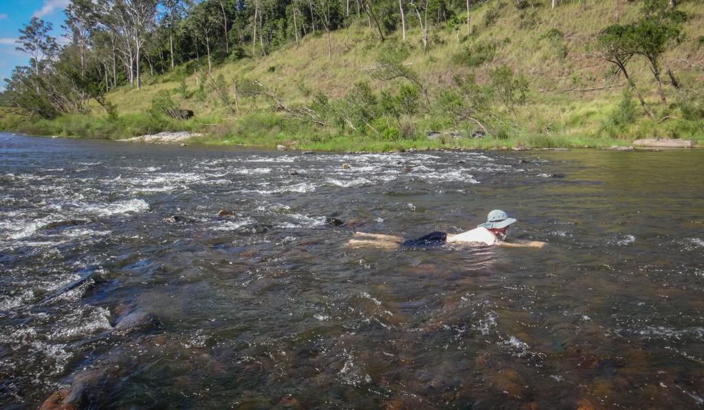 The Rapids, Kholo