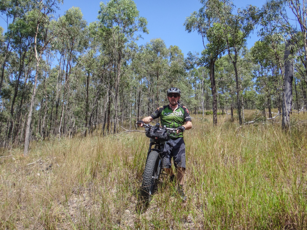 Bush Bashing