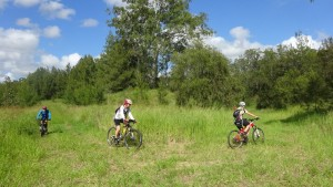 Mountain Biking at Sapling Pocket