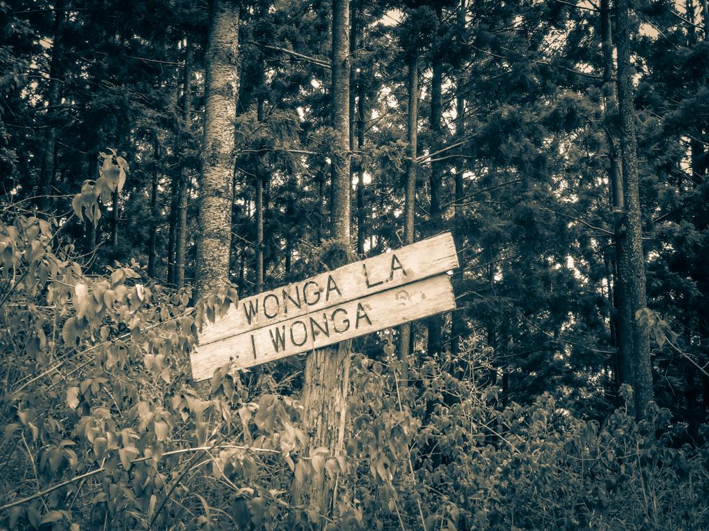 Wonga Lane
