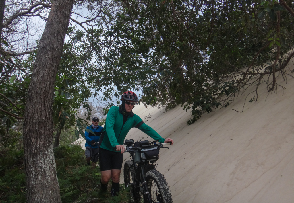 Encroaching Dunes