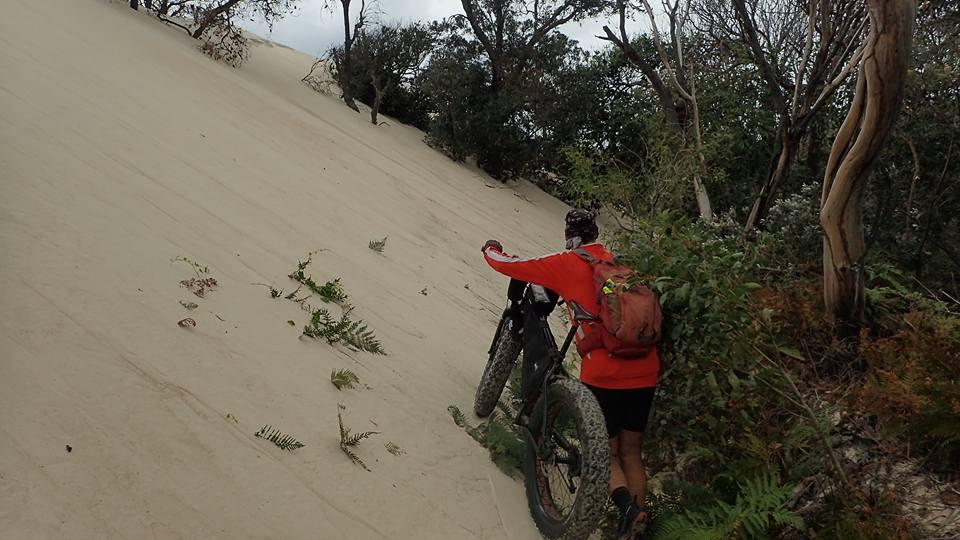Encroaching Dune