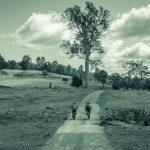 Return to Reedy Creek
