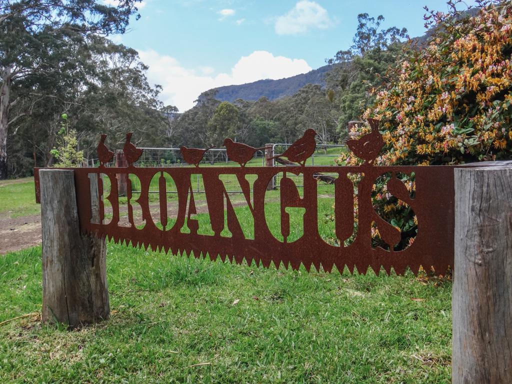 """Broangus"""