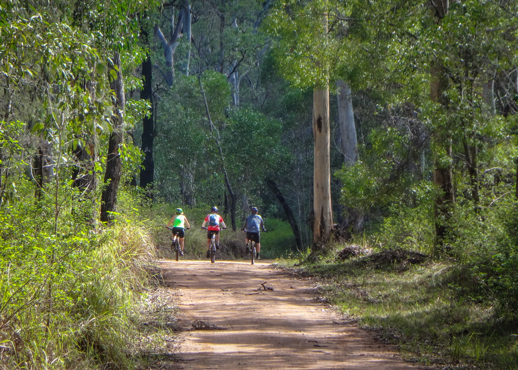 Lockyer National Park