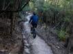 Tasmanian Trails